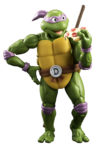 turtles donatello003W